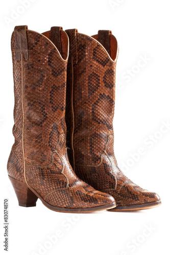 nouveau style 756b7 467d7 Botte danse country en python sur fond blanc - Buy this ...