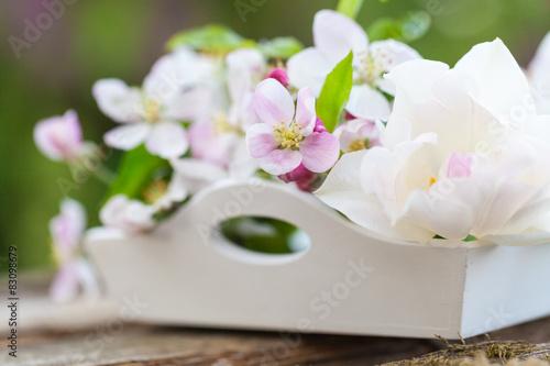 Plakat Tulipan i jabłko kwiaty na tacy