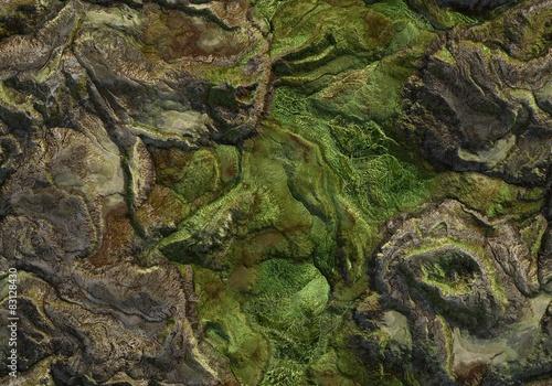 Fotografia Seamless Terrain Texture Map