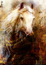 Horse Heads, Abstract Ocre Bac...
