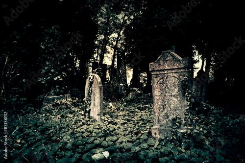 Photo sur Toile Cimetiere Old cemetery