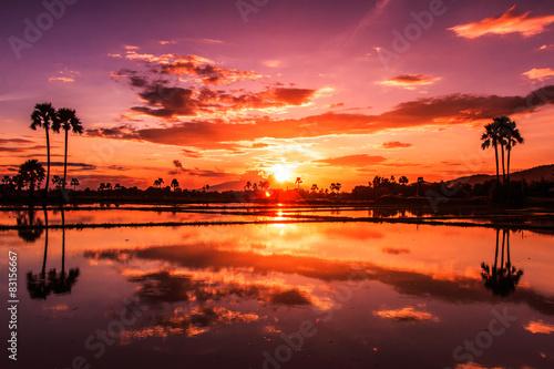 Poster Crimson Landscape of sunset sky