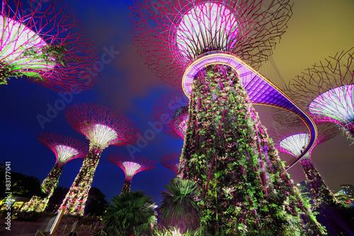 Photo  Magic garden at night, Singapore