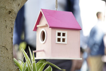 Pink Bird House Hanging On A Tree