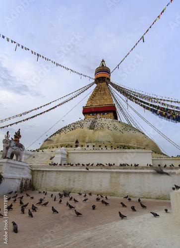 Fotografie, Obraz  grande stupa katmandou