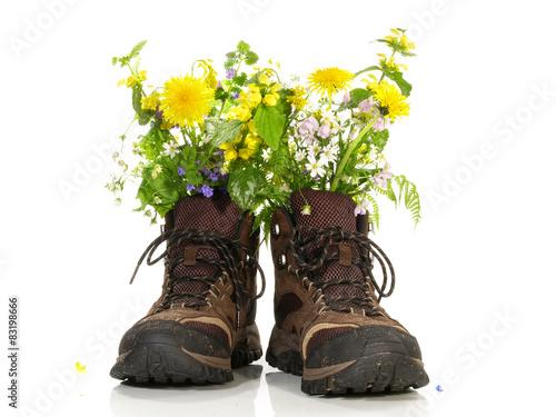 Fotografía  Wanderschuhe mit Blumen