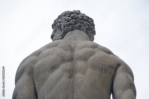 Hercules statue seen from behind Canvas-taulu