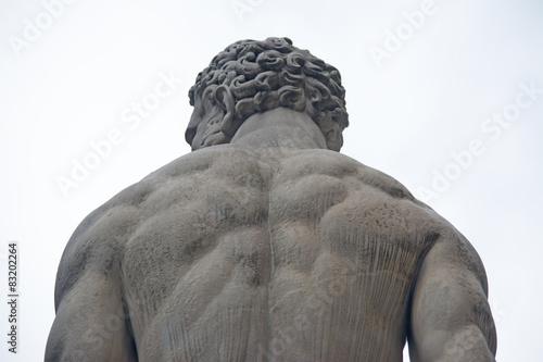 Obraz na plátne Hercules statue seen from behind