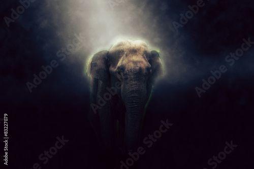 Photo  HDR photo of elephant