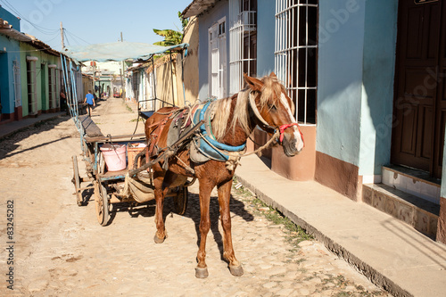 Trinidad - 2015: a horse with harness wagon parked on a street. Wallpaper Mural