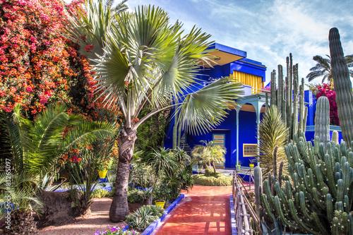 Poster Maroc jardin de la villa Majorelle