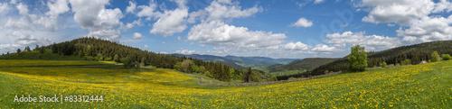 Crédence de cuisine en verre imprimé Vieux rose panorama des Vosges