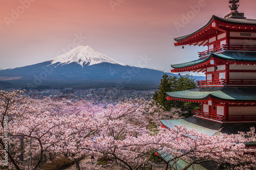 Photo Stands Japan Chureito Pagoda with sakura & Beautiful Mt.fuji View