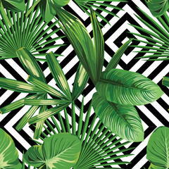 Fototapeta Inspiracje na lato tropical palm leaves pattern, geometric background