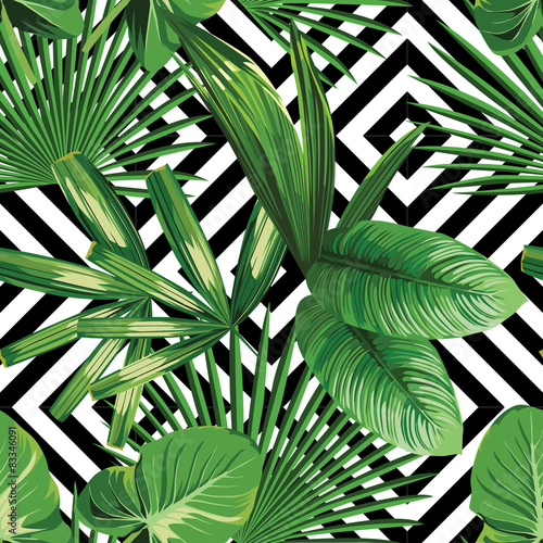 Tela tropical palm leaves pattern, geometric background