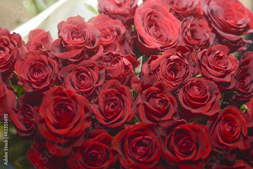 Bouquet of red roses #83355695