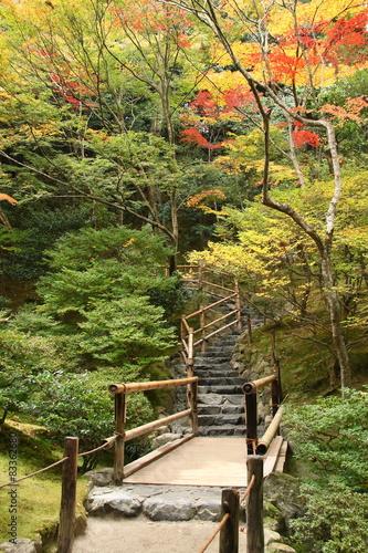 schody-na-wzgorzu-w-japonskim-ogrodzie-kioto