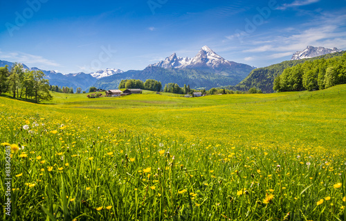 Foto op Canvas Pistache Idyllic landscape in the Alps with green meadows and flowers