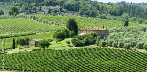 Chianti, Tuscany Fototapet