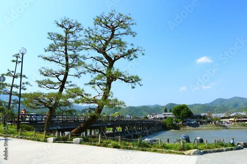 Tuinposter Purper 渡月橋