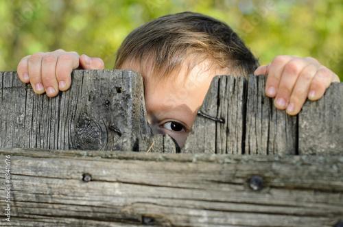 Fotografía  Male Kid Peeking Over a Rustic Wooden Fence