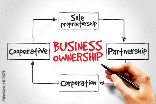 Fotografie, Obraz  Business ownership mind map concept