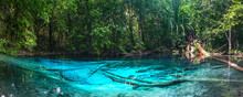 Emerald Blue Pool. Krabi, Thai...