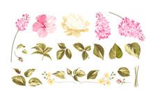 Elements Of Flower Bouquets.