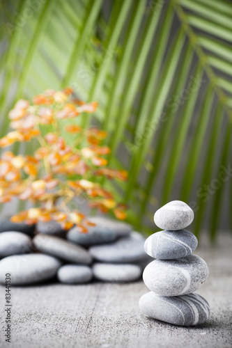 Photo Stands Water lilies Wellness background.
