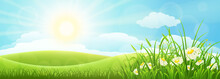 Summer Meadow Landscape With Green Grass, Flowers, Hills And Sun