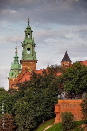 Wawel Royal Castle in Krakow #83451879