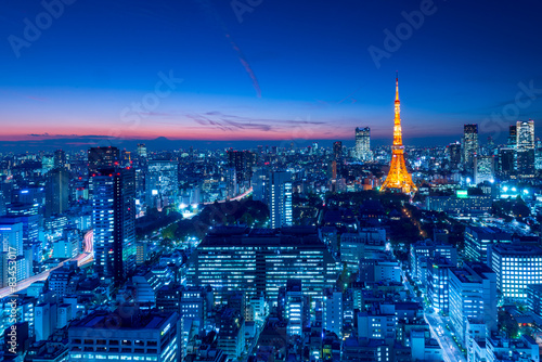 Naklejka premium Tokyo Tower, Tokio, Japonia