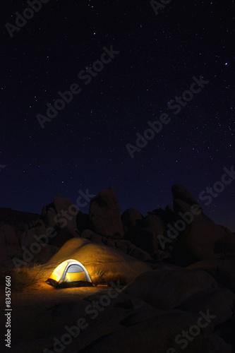 In de dag Kamperen Camping at Night in Joshua Tree Park