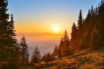 Fototapeta Wschód / zachód słońca Sunrise forest in spring mountains