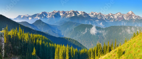 Morning view of spring forest and mountains with snow