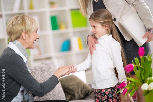 Little  girl introduction her new babysitter Wallpaper Mural