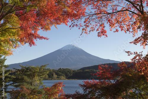 liscie-klonu-zmieniaja-kolor-na-jesien-w-fuji-w-japonii
