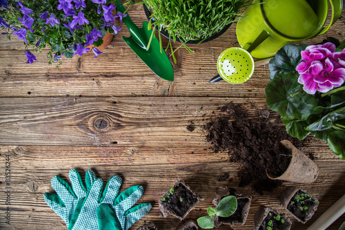 Outdoor gardening tools and herbs Fototapet