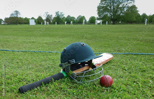 Fotografie, Obraz  Cricket match on the English village green.