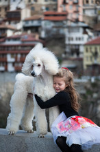 Portrait Of Girl (6-7) Embracing Large White Poodle