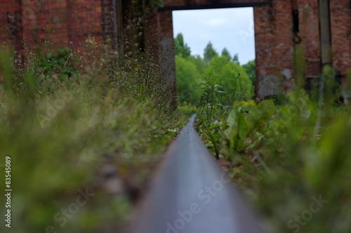 Fototapeta zapomniana trasa kolejowa