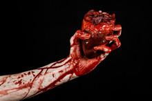 Terrible Bloody Hand Hold Torn Bleeding Human Heart Isolated