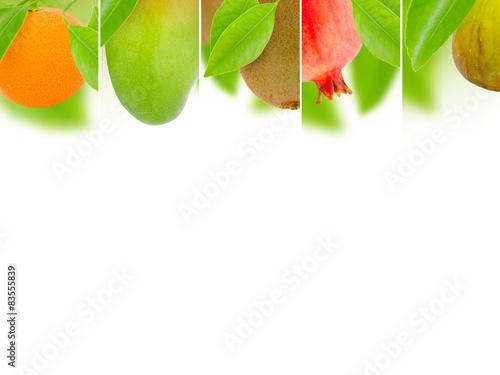 Fruit mix © linda_vostrovska