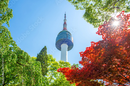 Photo sur Aluminium Seoul Seoul Tower and red autumn maple leaves at Namsan mountain in So