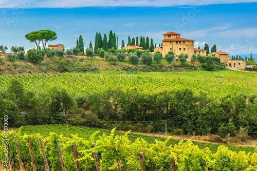 Chianti vineyard landscape with stone house,Tuscany,Italy,Europe Fototapet