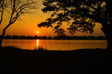 Beautiful sunset over lake with silhouetted of tree