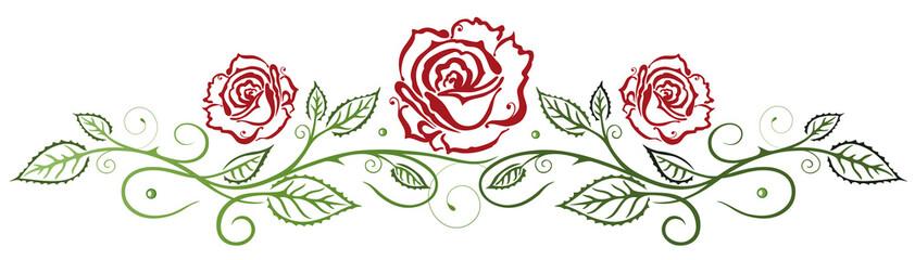 FototapetaRote Rosen mit Blättern