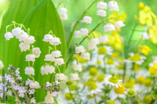 Wall Murals Lily of the valley lily of the valley and chamomile