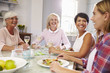 Group Of Mature Female Friends Enjoying Meal At Home