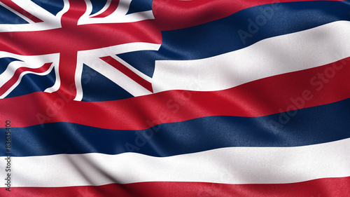 US state flag of Hawaii waving in the wind